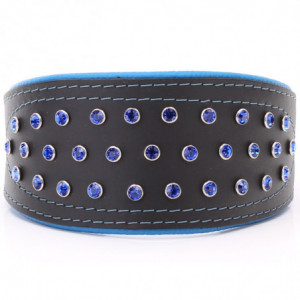 Black & Blue Hound Collar...