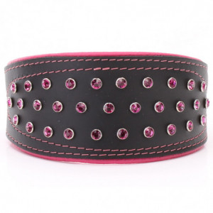 Black & Pink Hound Collar...