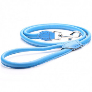 Blue Rolled Leather Dog Lead