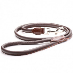 Brown Rolled Leather Dog Lead
