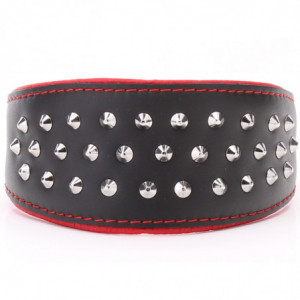 Black & Red Hound Collar...
