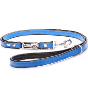 Adjustable Blue Leather Dog...