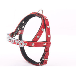 Crystalised Red Leather Dog...