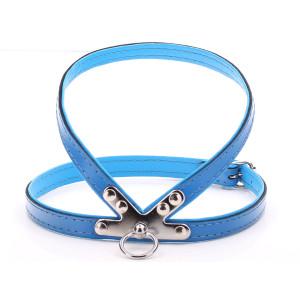 Small Blue Harness