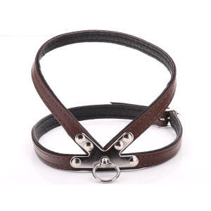 Small Brown Harness