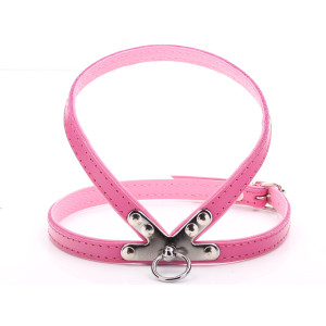 Small Pink Harness