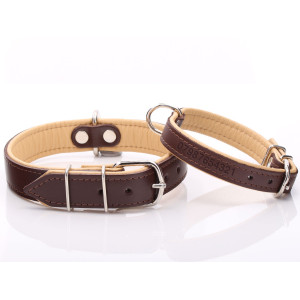 Brown & Beige Leather Dog...