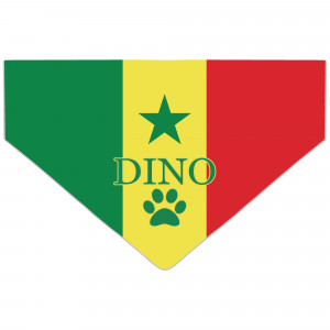 Personalised Senegal Flag...