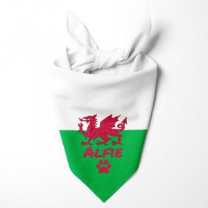 Welsh Y Ddraig Goch Flag...