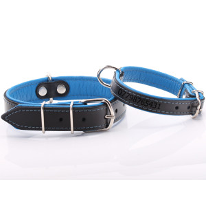Black & Blue Leather Dog...