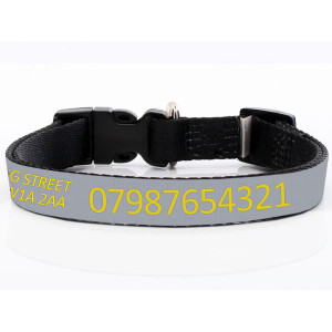 Adjustable Grey Dog Collar...