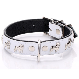 White French Bulldog Collar