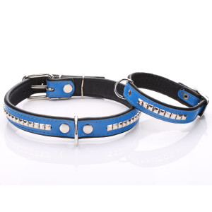 Blue Leather Dog Collar...