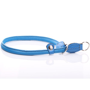 Blue Round Leather Slip Collar