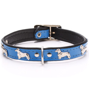 Blue Leather Dachshund Collar