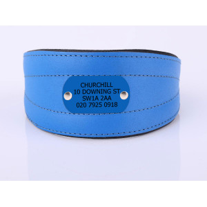 Blue Sight Hound Collar...