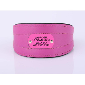 Pink Sight Hound Collar...