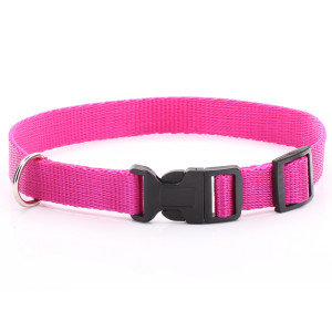 Adjustable Fuchsia Dog Collar