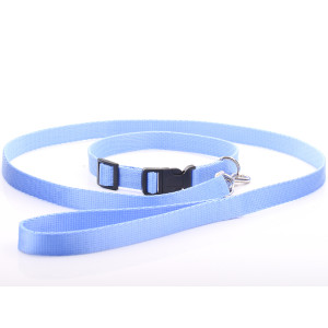 Baby Blue Nylon Dog Collar...