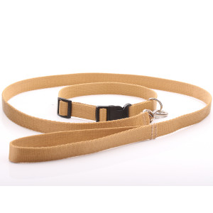 Beige Nylon Dog Collar &...