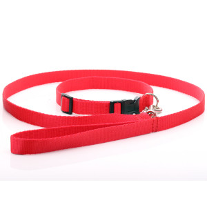 Red Nylon Dog Collar & Lead...