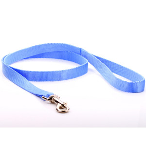 Baby Blue Nylon Dog Lead