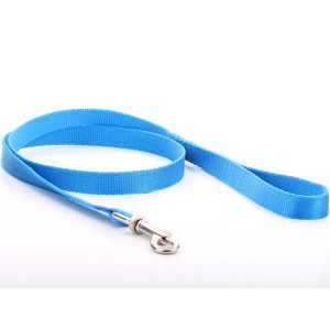 Blue Nylon Dog Lead