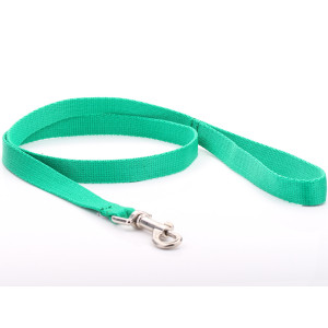Green Nylon Dog Lead