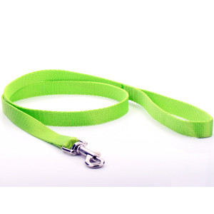 Lime Green Nylon Dog Lead