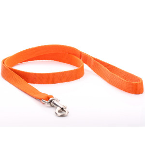 Orange Nylon Dog Lead