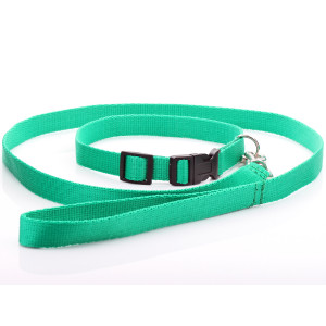 Green Nylon Dog Collar &...