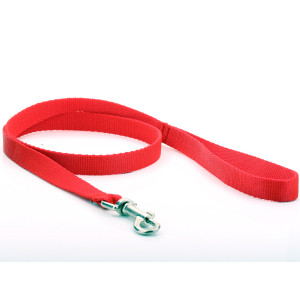 Red Nylon Dog Lead