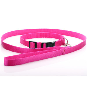 Fuchsia Nylon Dog Collar &...