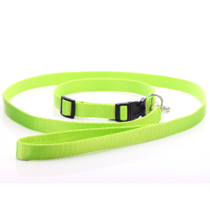 Lime Green Nylon Dog Collar...