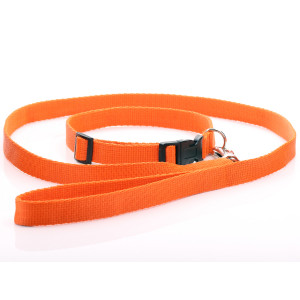 Orange Nylon Dog Collar &...