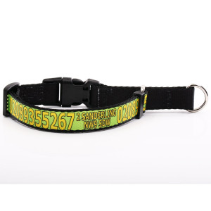 Green Martingale Collar...