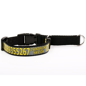 Grey Martingale Collar with...