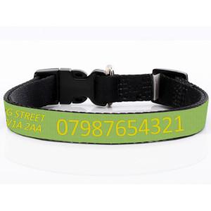 Adjustable Green Dog Collar...