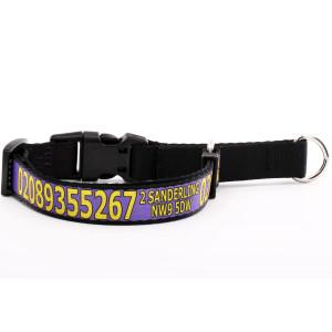 Purple Martingale Collar...