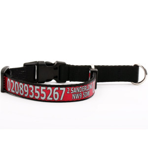Red Martingale Collar with...