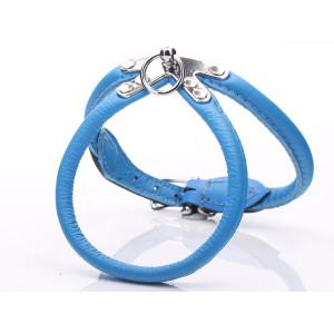 Blauw Platte Lederen Harnas...