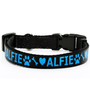 Adjustable Dog Collar with...
