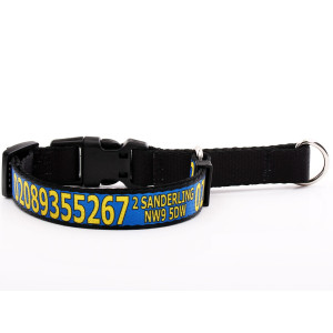 Blue Martingale Collar with...