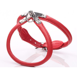 Red Rolled Leather Dog Harness