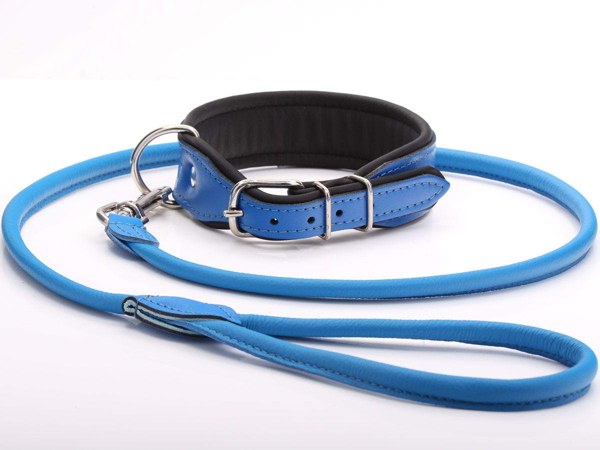 Leather Puppy Collar Amp Leash Set