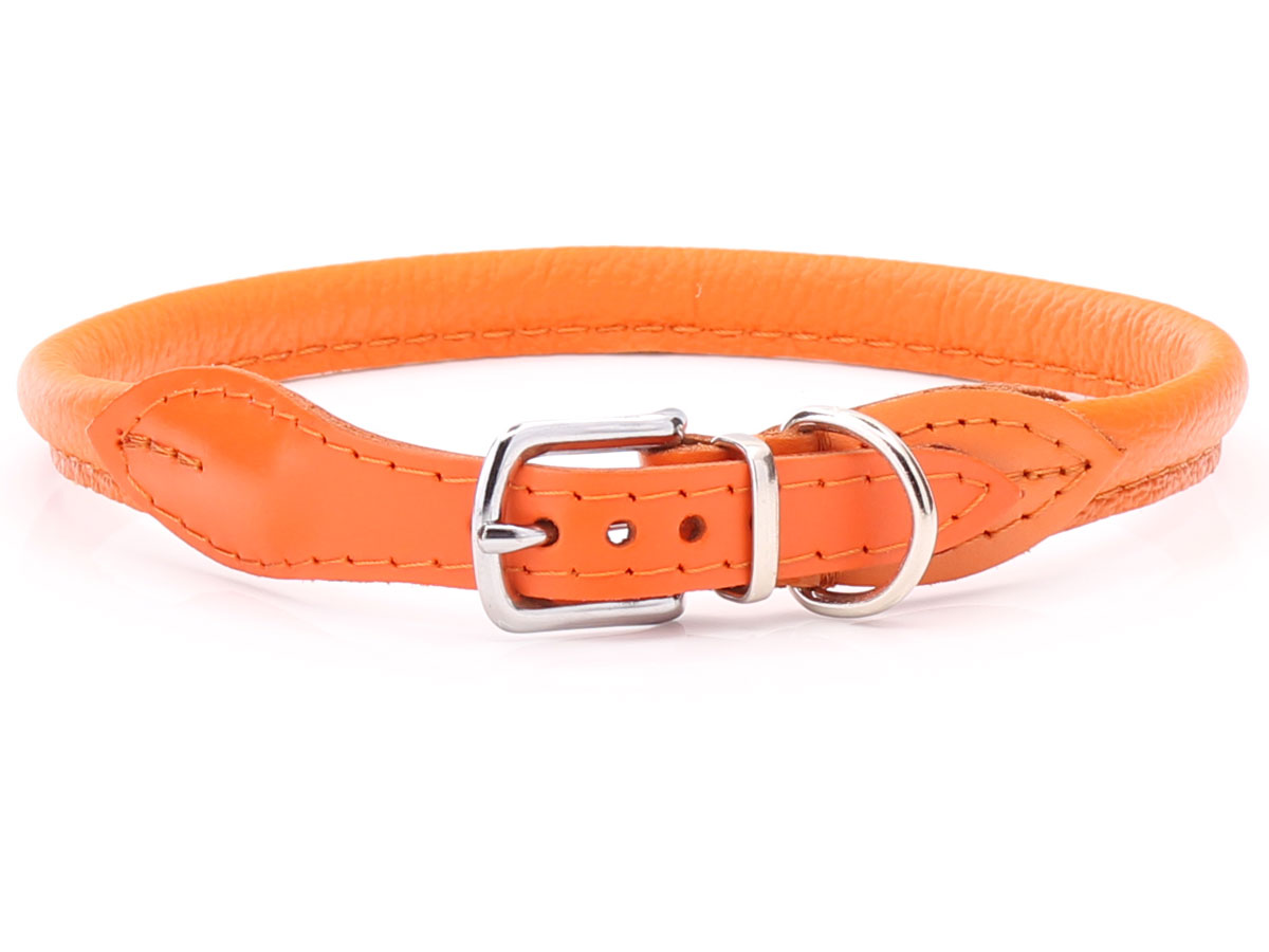 Collars For Long Haired Dogs