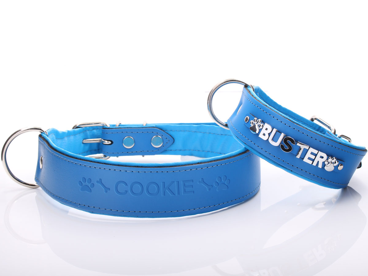 Personalised Dog Collars With Large Size Chrome Letters