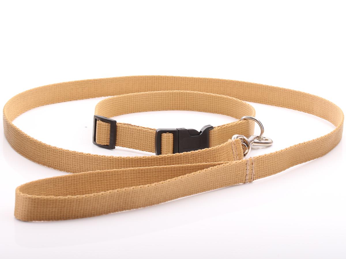Beige Nylon Dog Collar Amp Lead Set